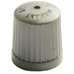 Bouchons de valve en plastique, TPMS, gris, paquet de 100 pièces